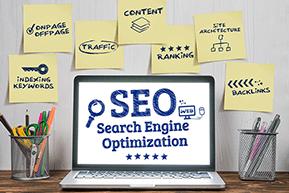 Flamingo Infotech: Best Digital Marketing Company In Delhi