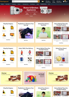 Flamingo Infotech: best website designer