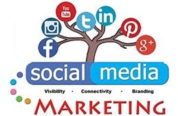 Flamingo Infotech: Best digital marketing agency in Delhi.