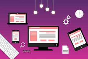 Flamingo Infotech: Best Website Development Company In Delhi